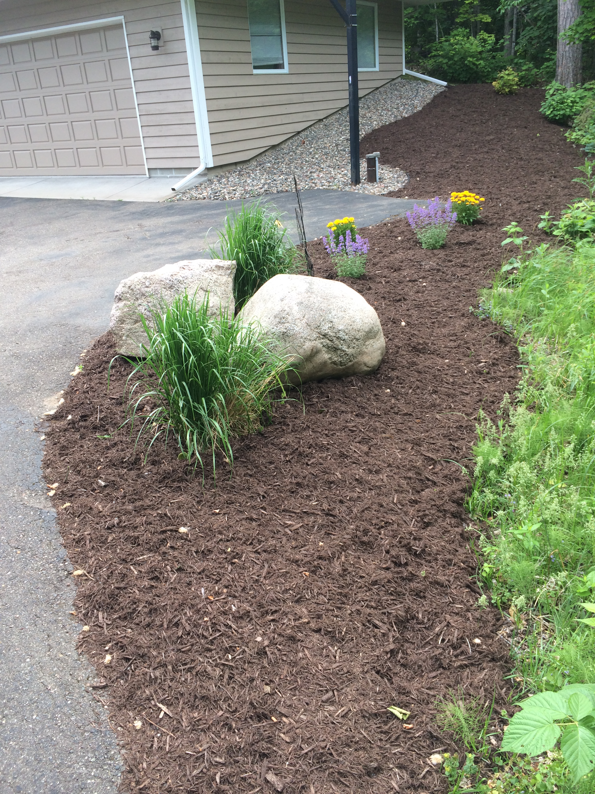 mulch bed with ornamental grasses